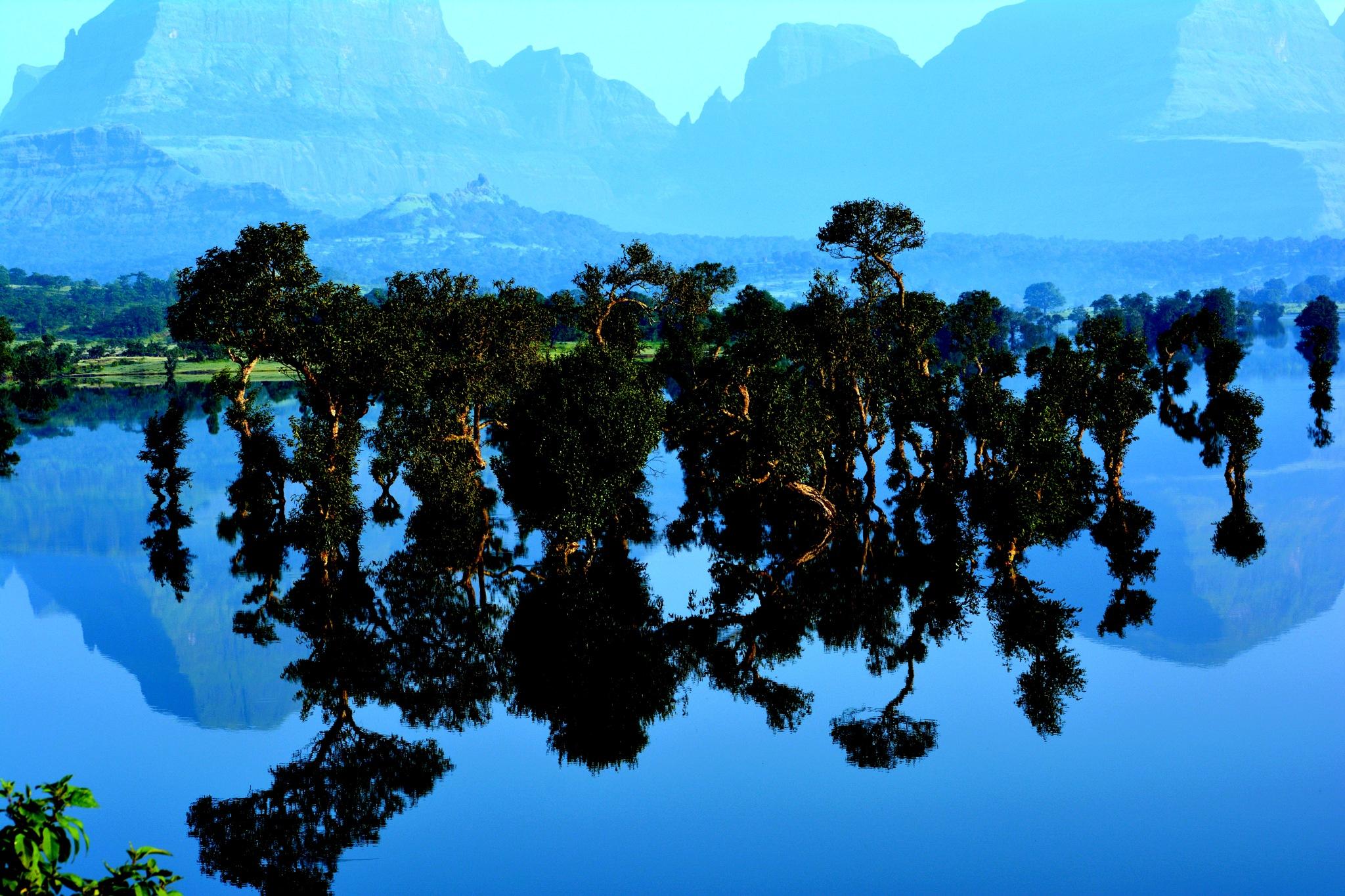 Mirror imgae in still water by Nayan Jain