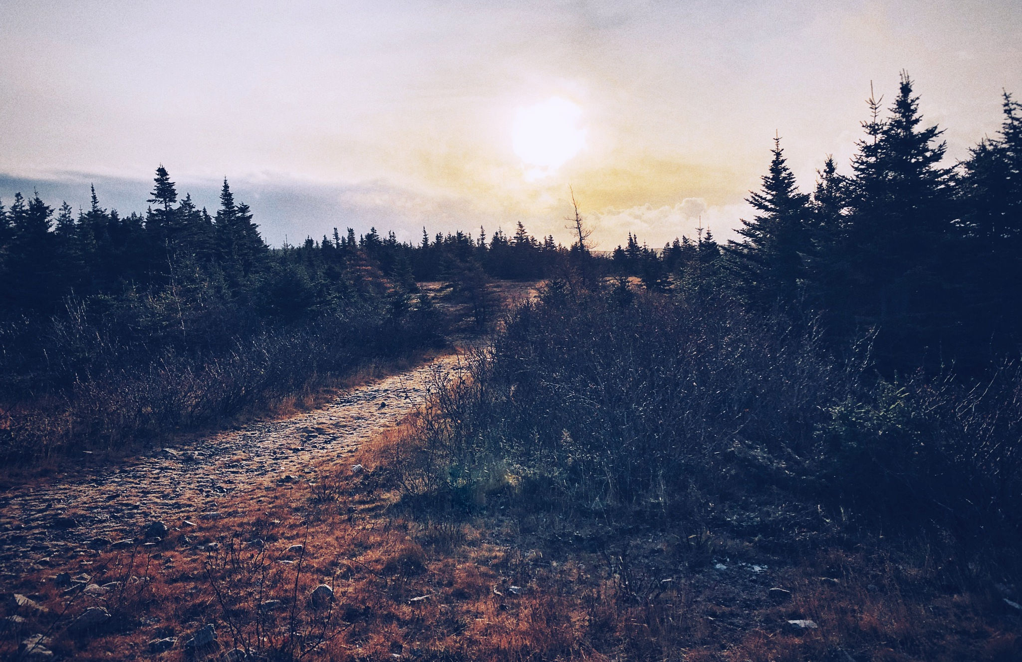 Back Road by Christopher Darlington