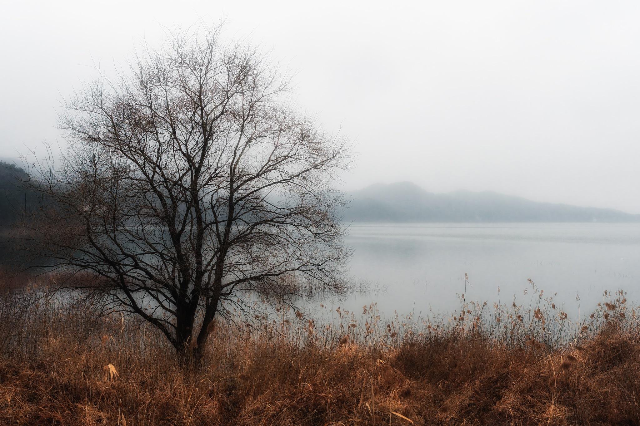 Alone by Sebastian Von Szuts