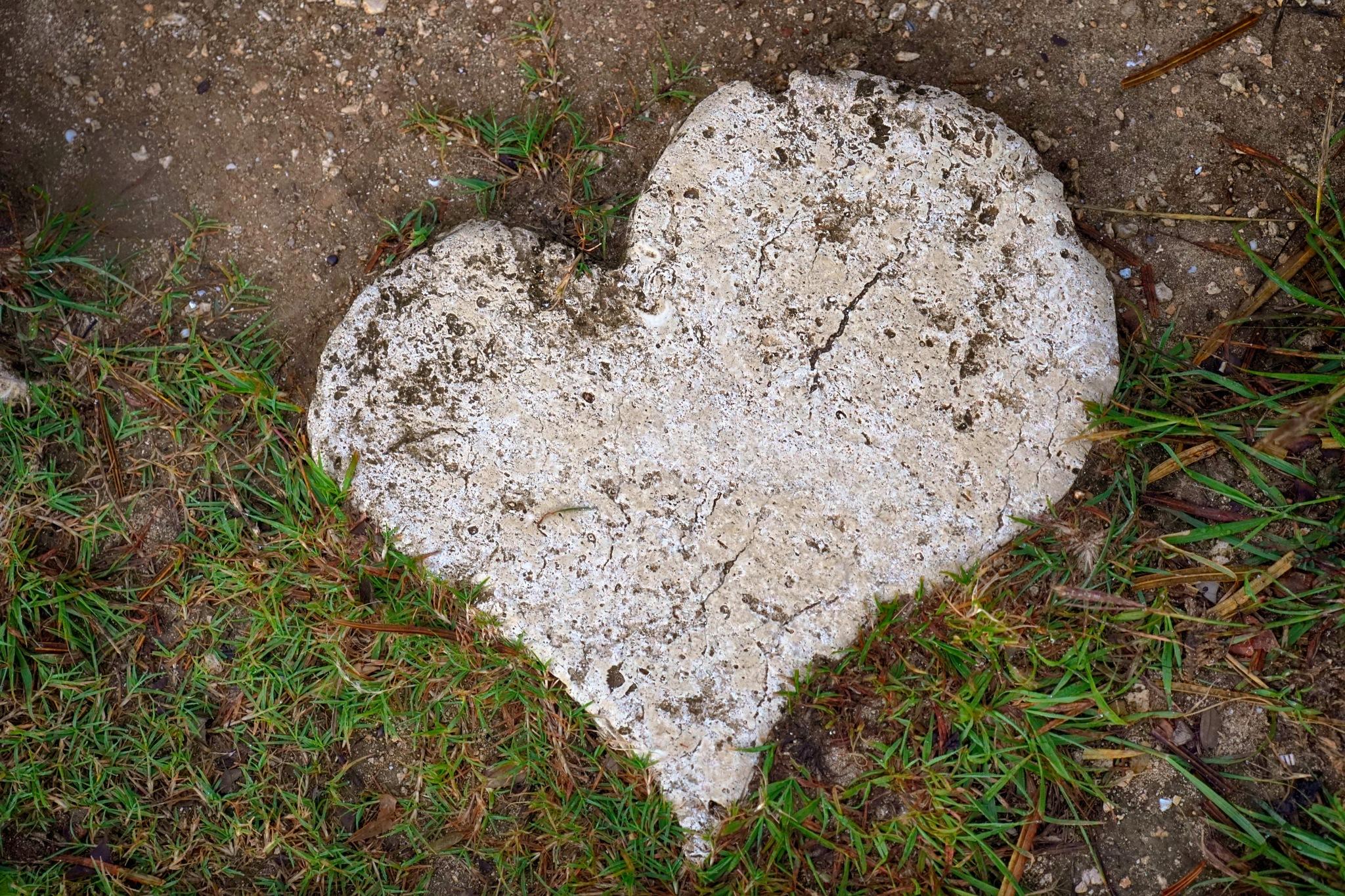 Hearts Everywhere We Walk by James K Polmanteer