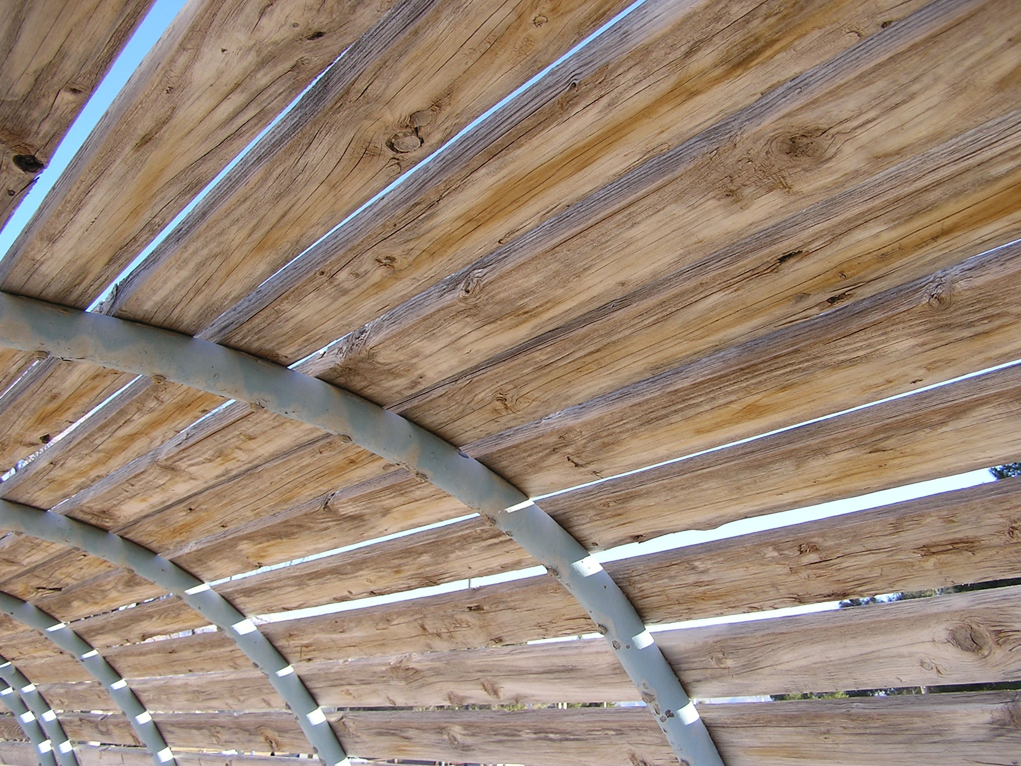 Dugout Roof by John Banks