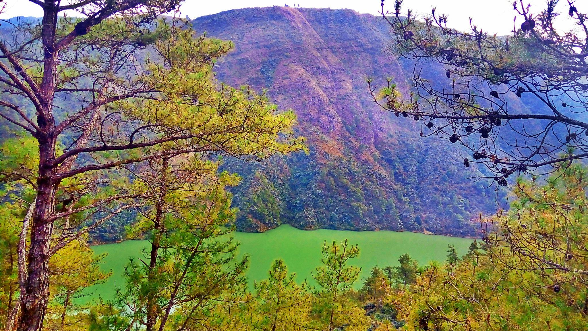 Green lava 2 by Konark C