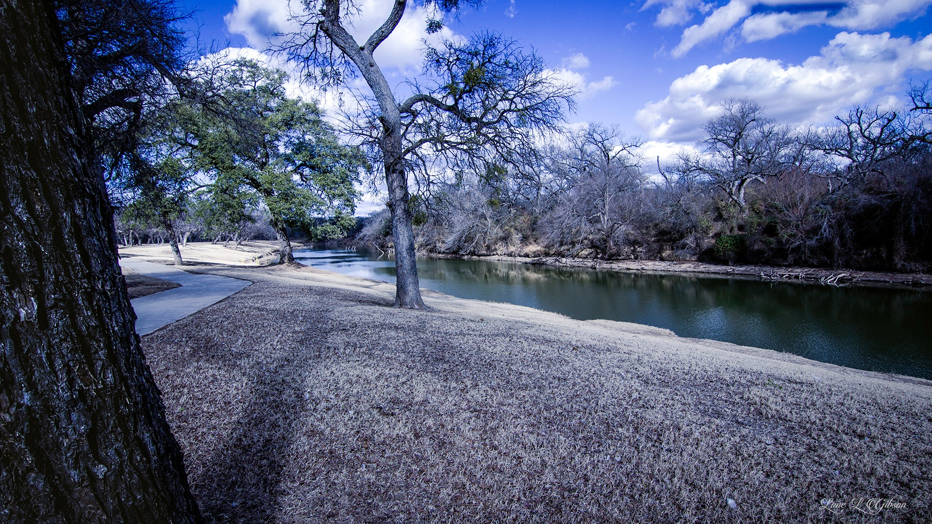 Wide Shot Up River by Lane L Gibson