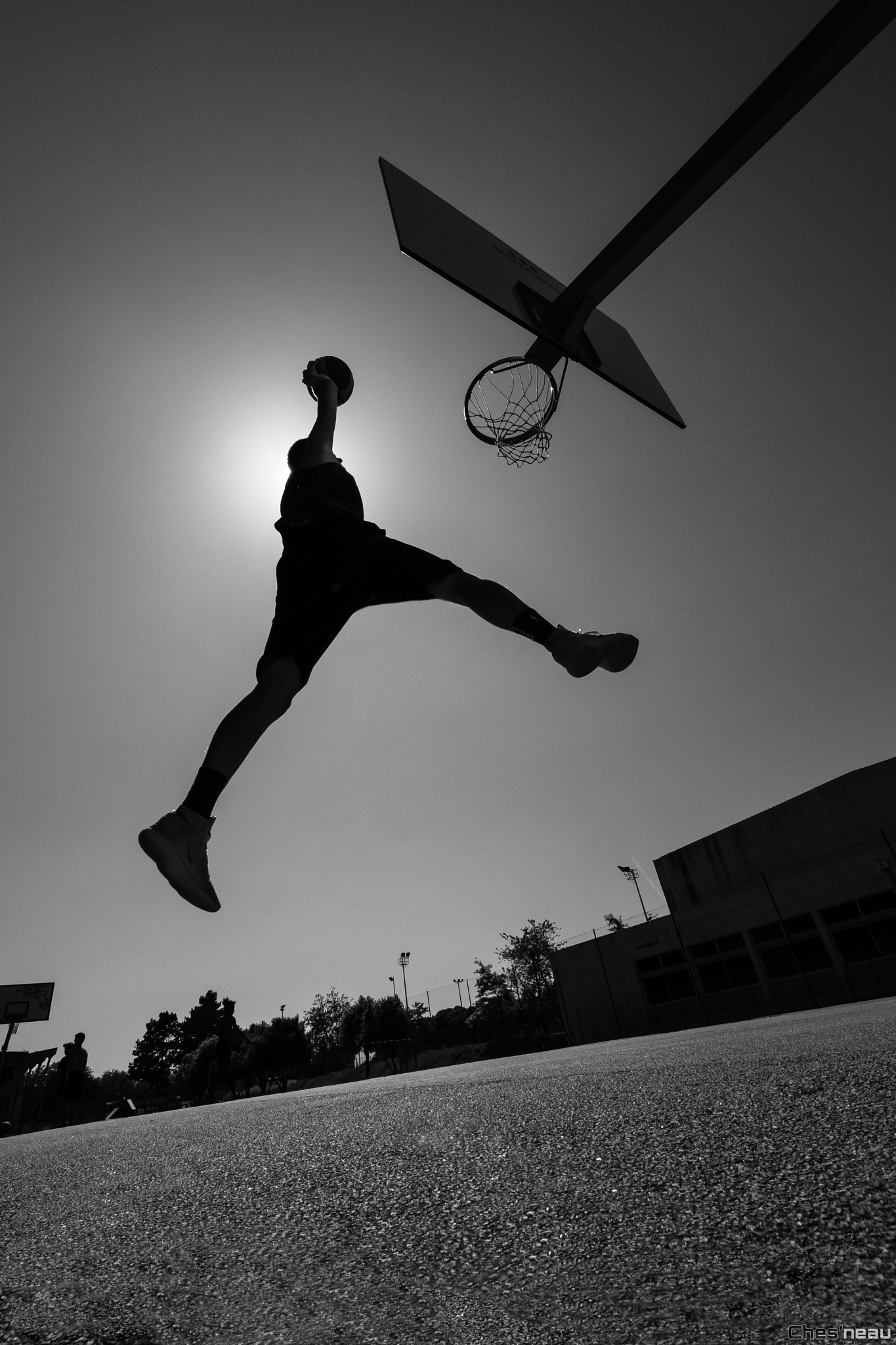 Basket by Chesneau Olivier