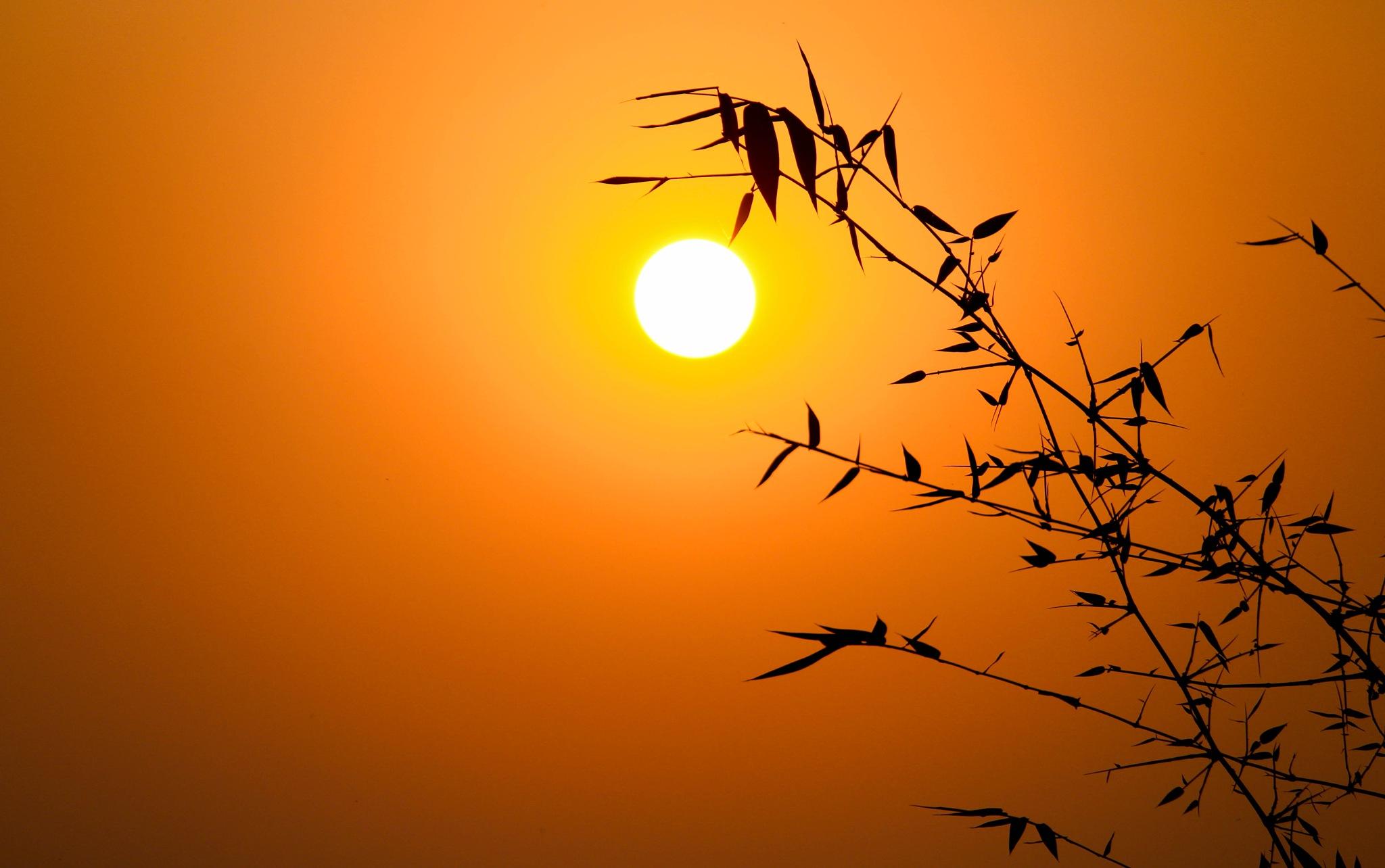 Dusk Time by Srinjoy Burman