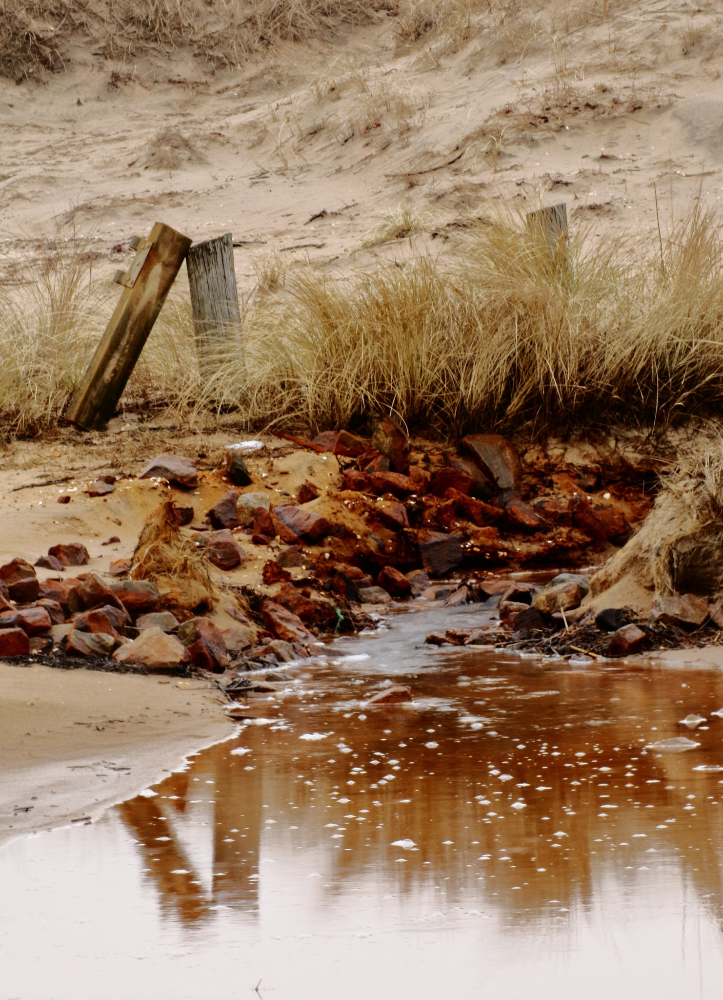 Beach stream by Markus Lindhe