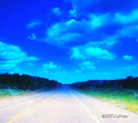 roadtrip scene complete with bugs on windshield by Lisa A Manco