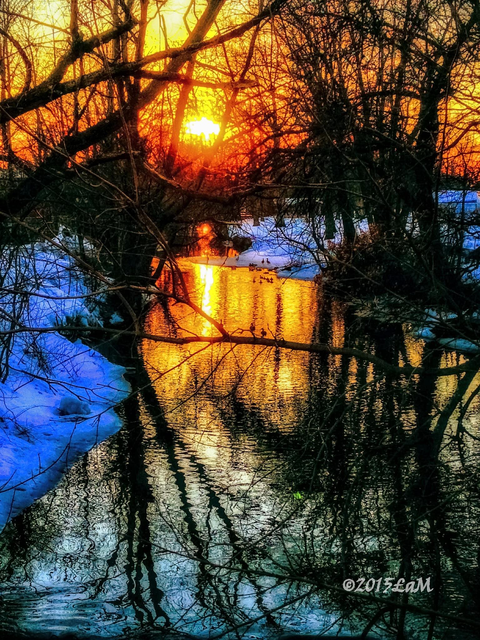 winter sunset by Lisa A Manco