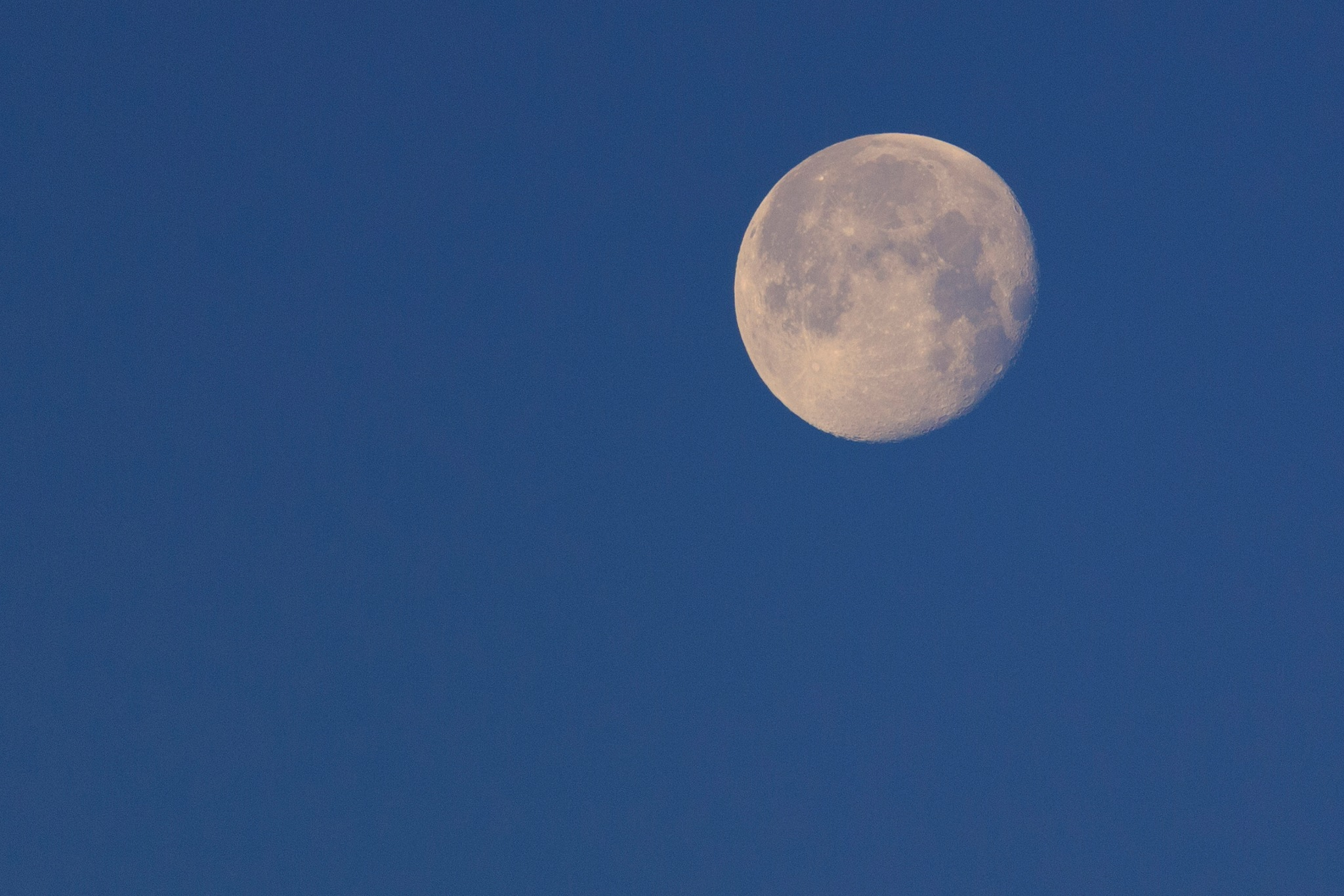 Morning Moon by annkielbasa