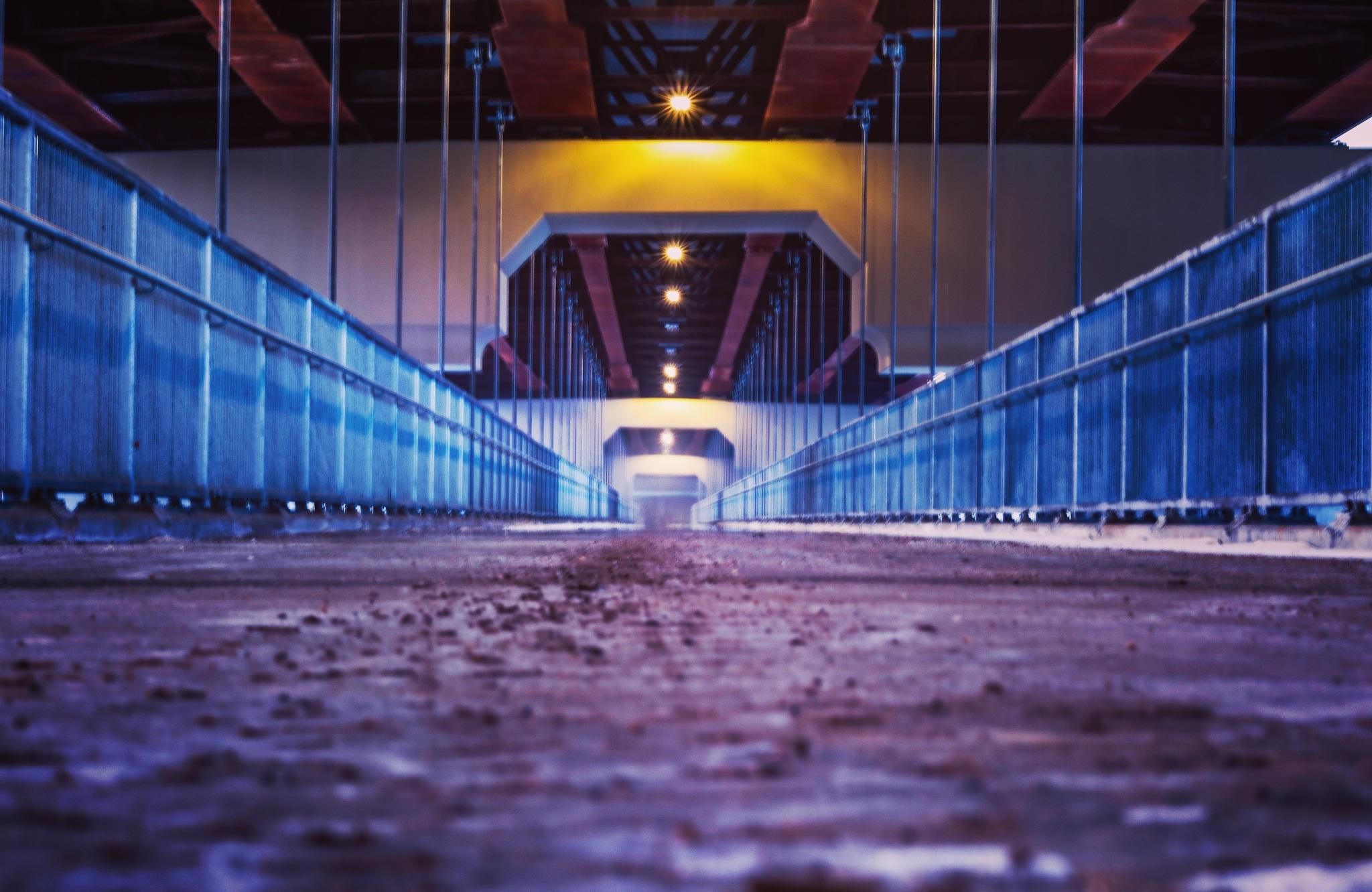 crossing bridges  by leif schmitz