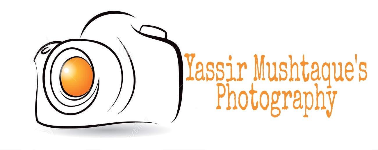 Professional Logo by Yassir Ibn Mushtaque