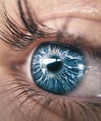 eye Photography  by Lucavanbroeckhuijsen