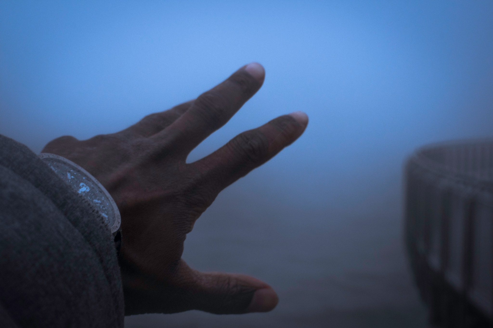 reaching for the future by Sebastian Alexander Bass