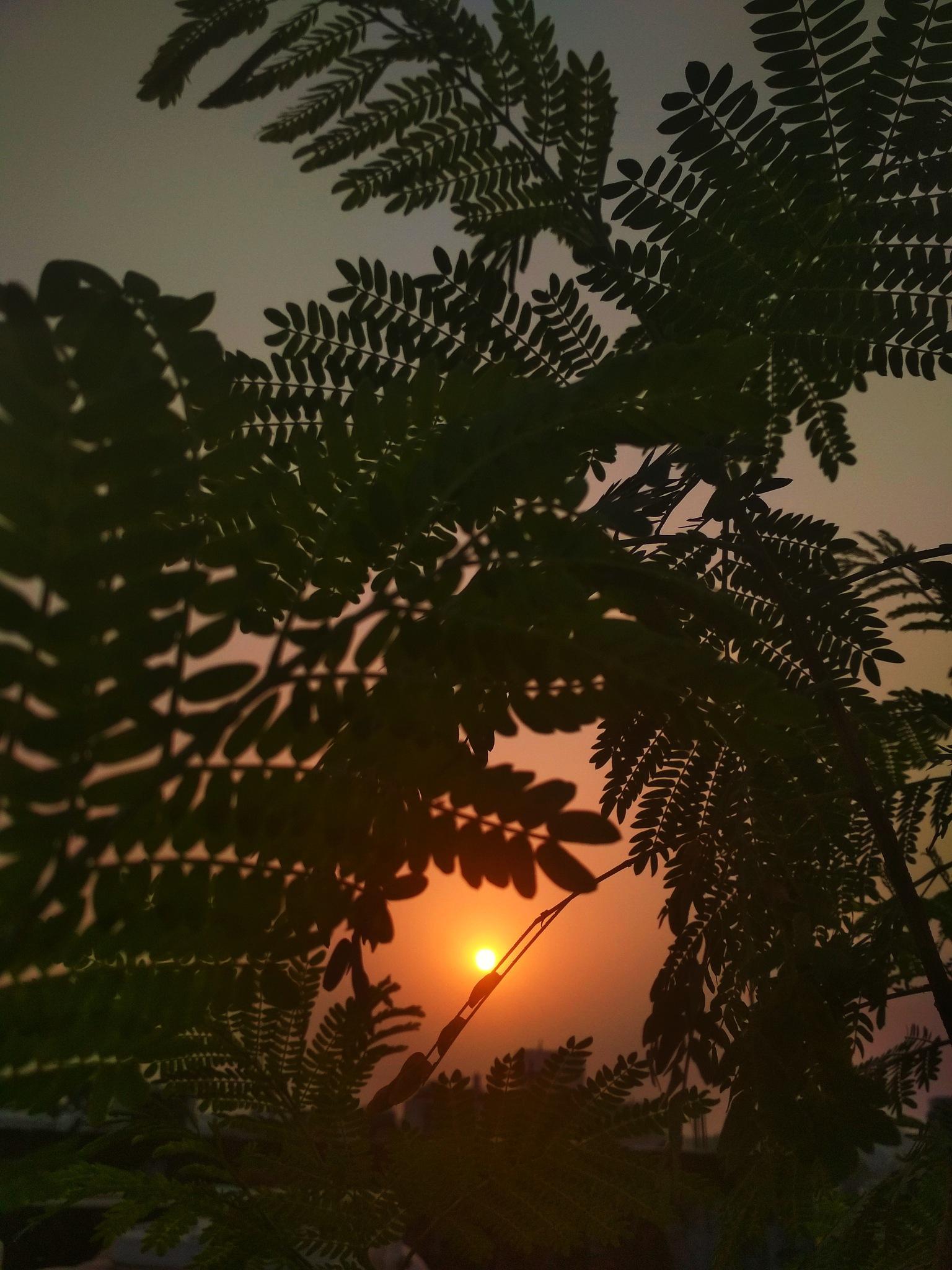 Untitled by Jayashree