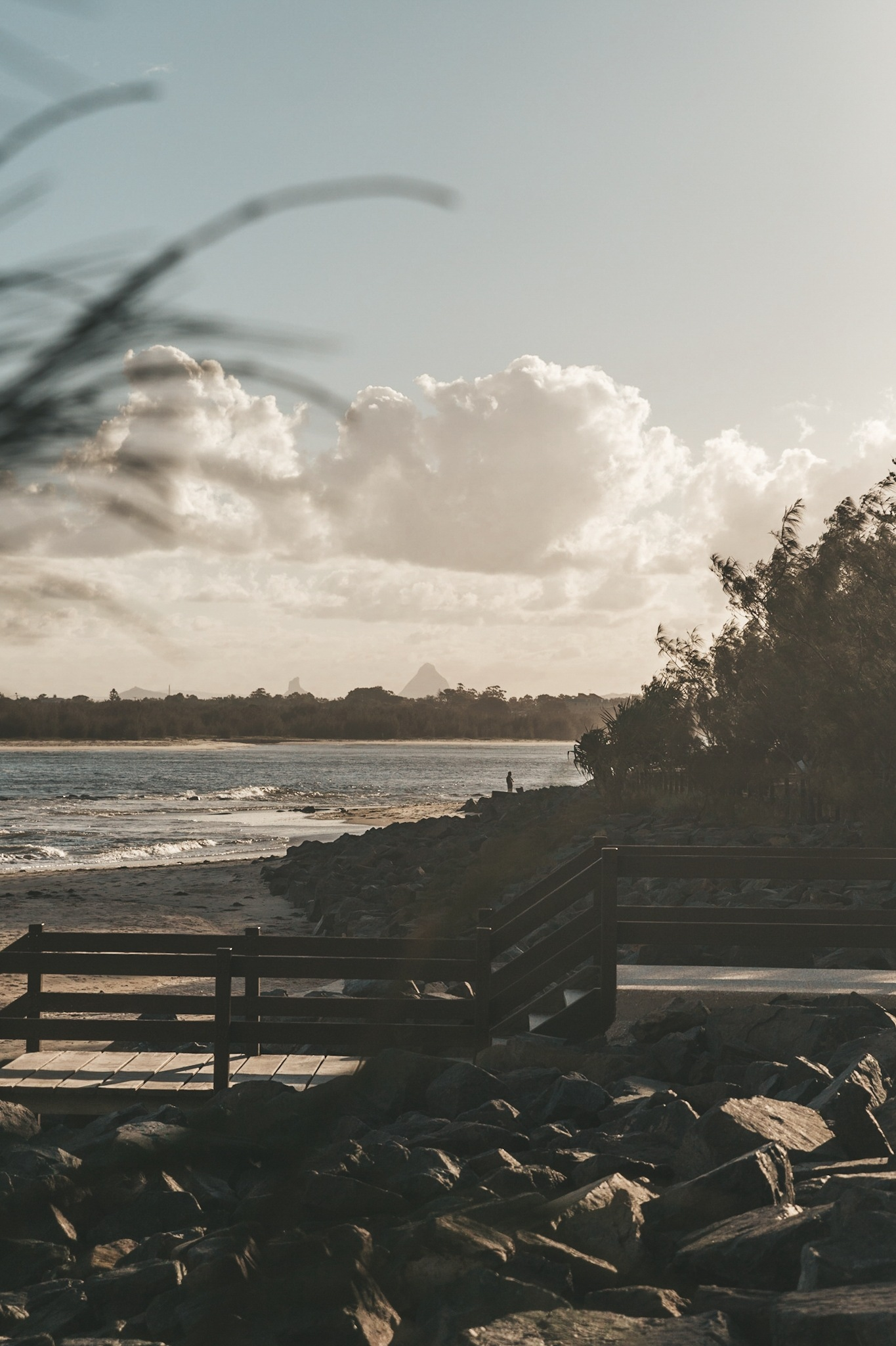 Golden Hour by Brandon Weekes