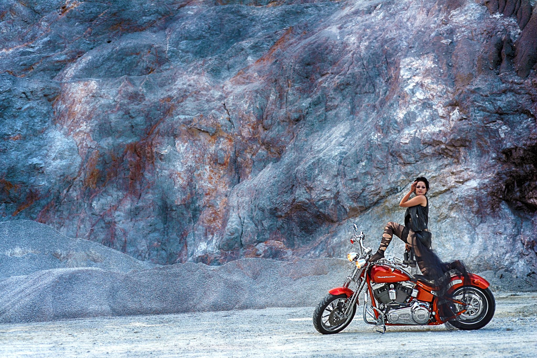 Harley by Mitja Derenda