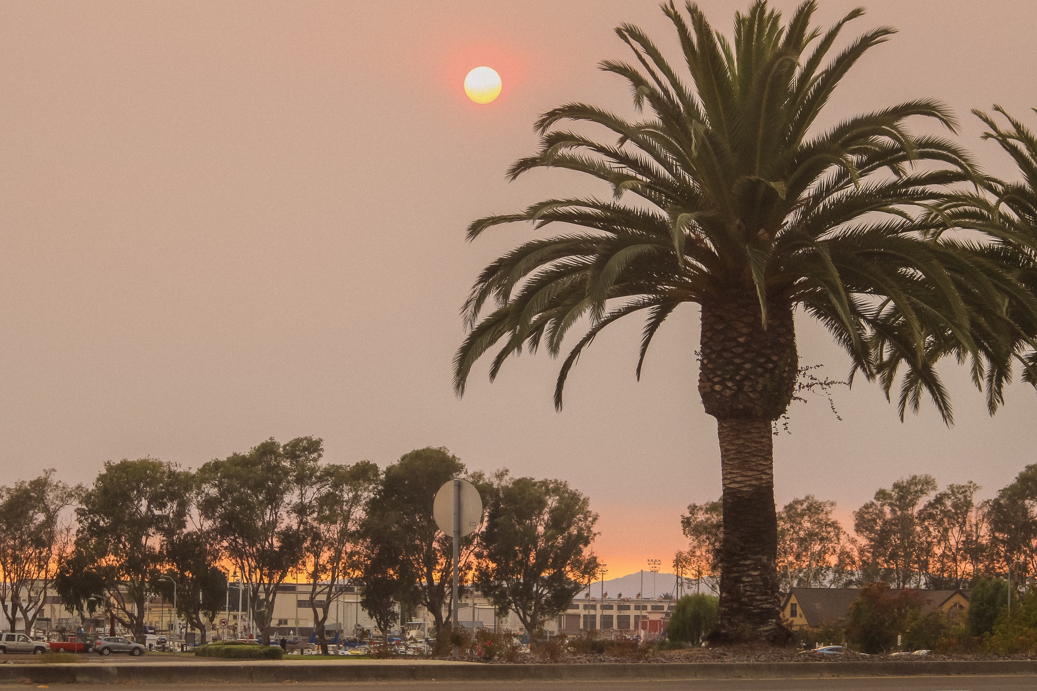 A true Blazing Sun.  by toshiroimages