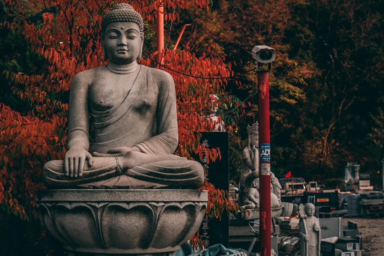 Buddha watching you. by Mack