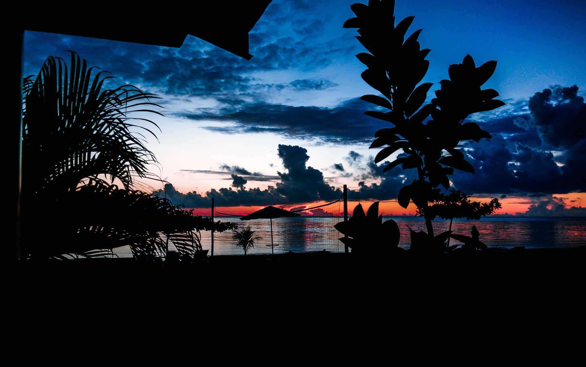 My mornings at Seaview Beach Resort, Sibulan.  by raynantamayo