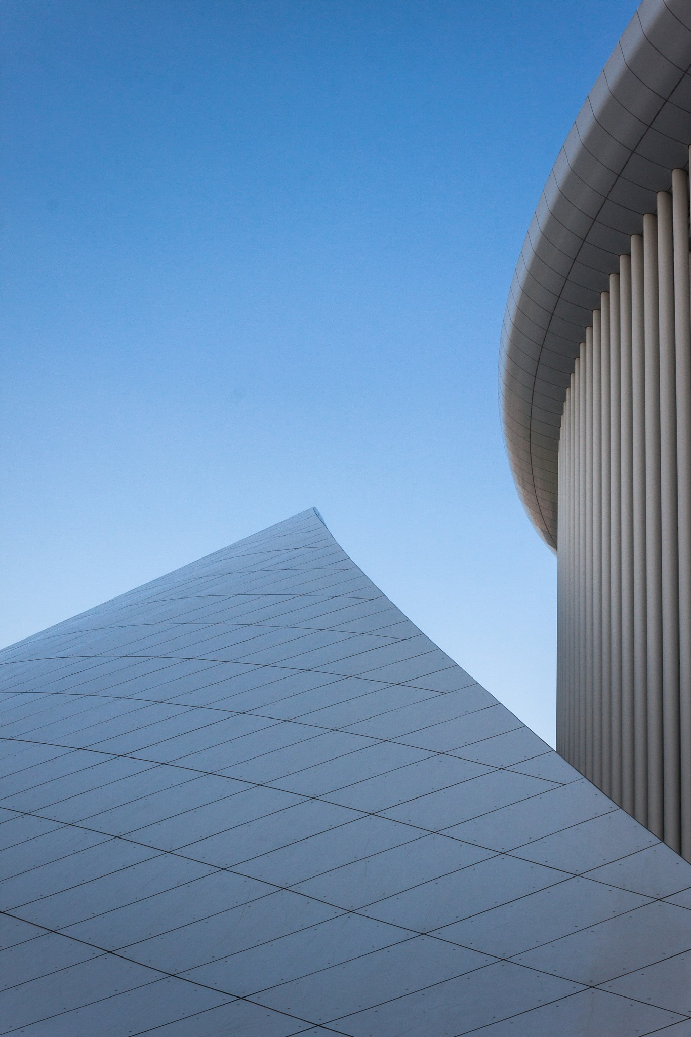 Curves by Sami Ouberdous
