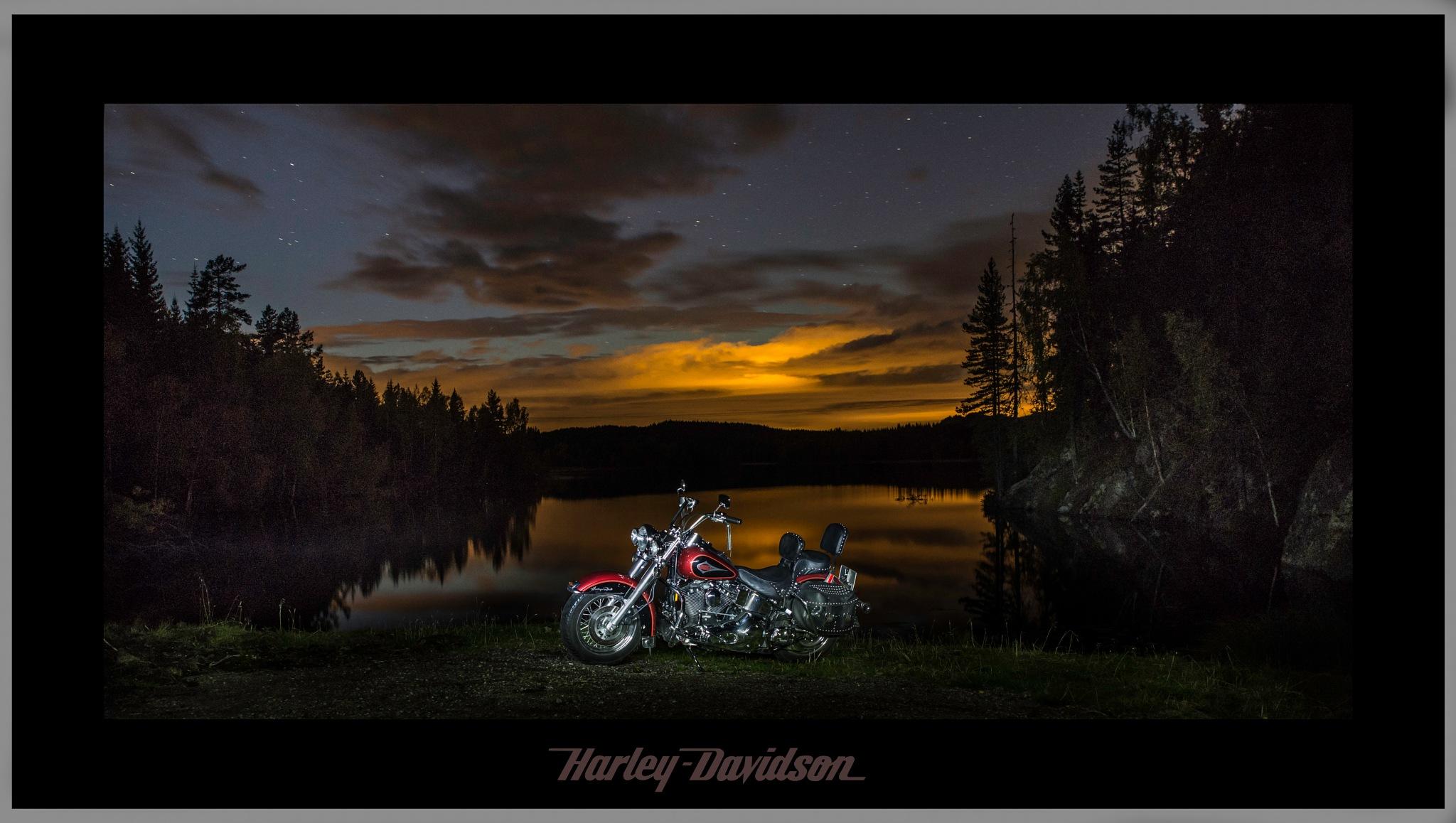 Harley Davidson by Kristen Tande