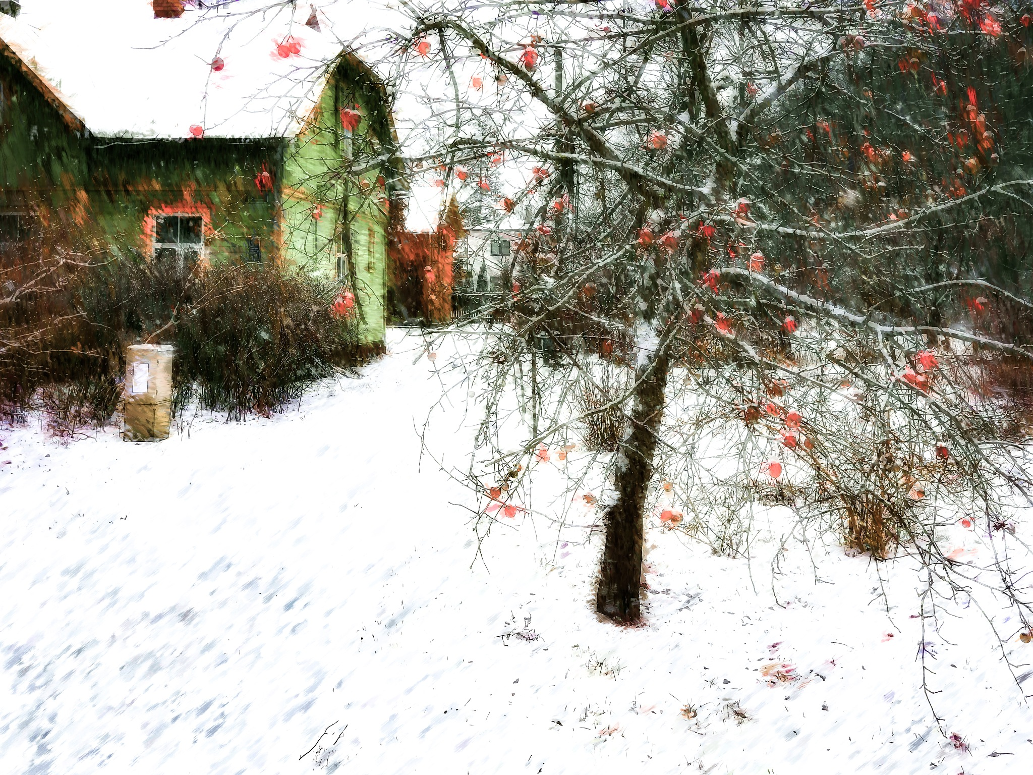 Apple & Snow by Aleksandrs Drozdovs
