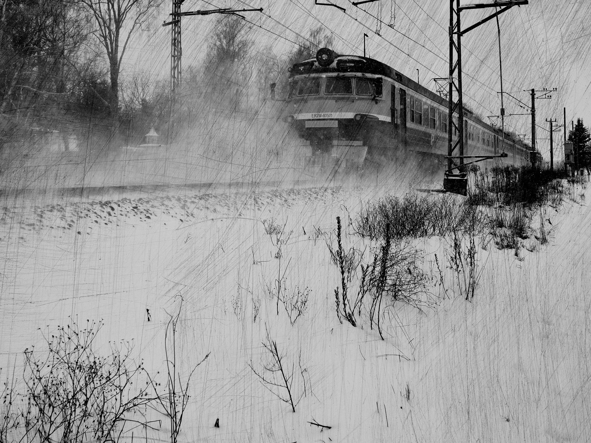 Train to the station... by Aleksandrs Drozdovs