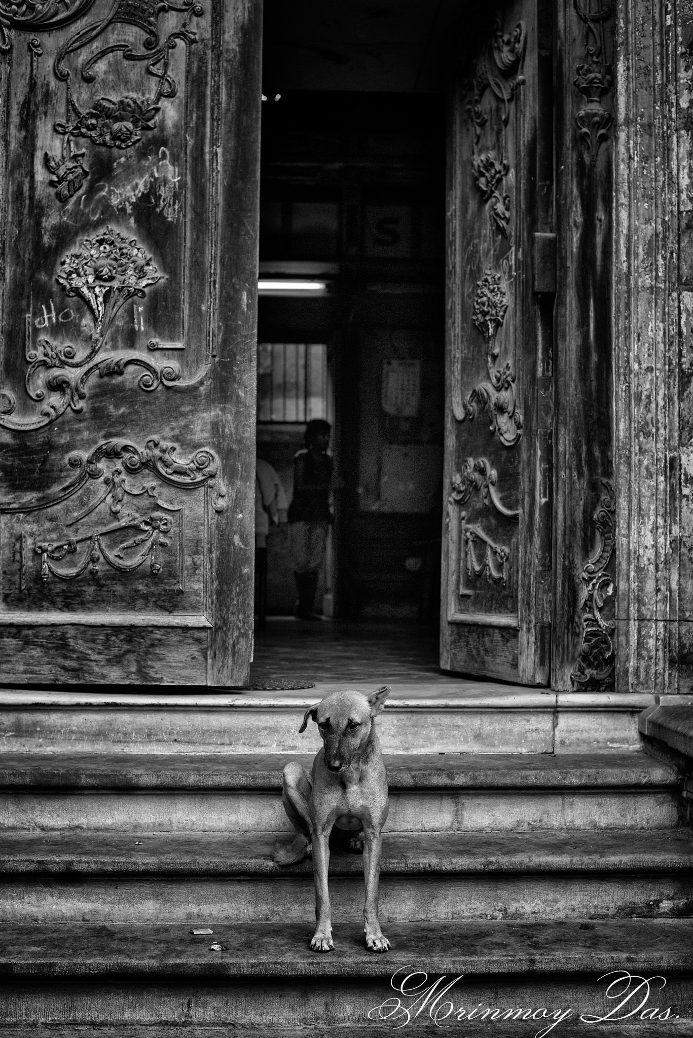 The door by Mrinmoy Das