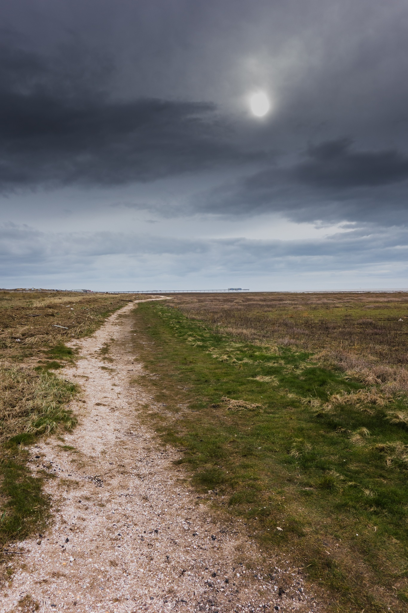 Sandy Trail  by Paul Taberner
