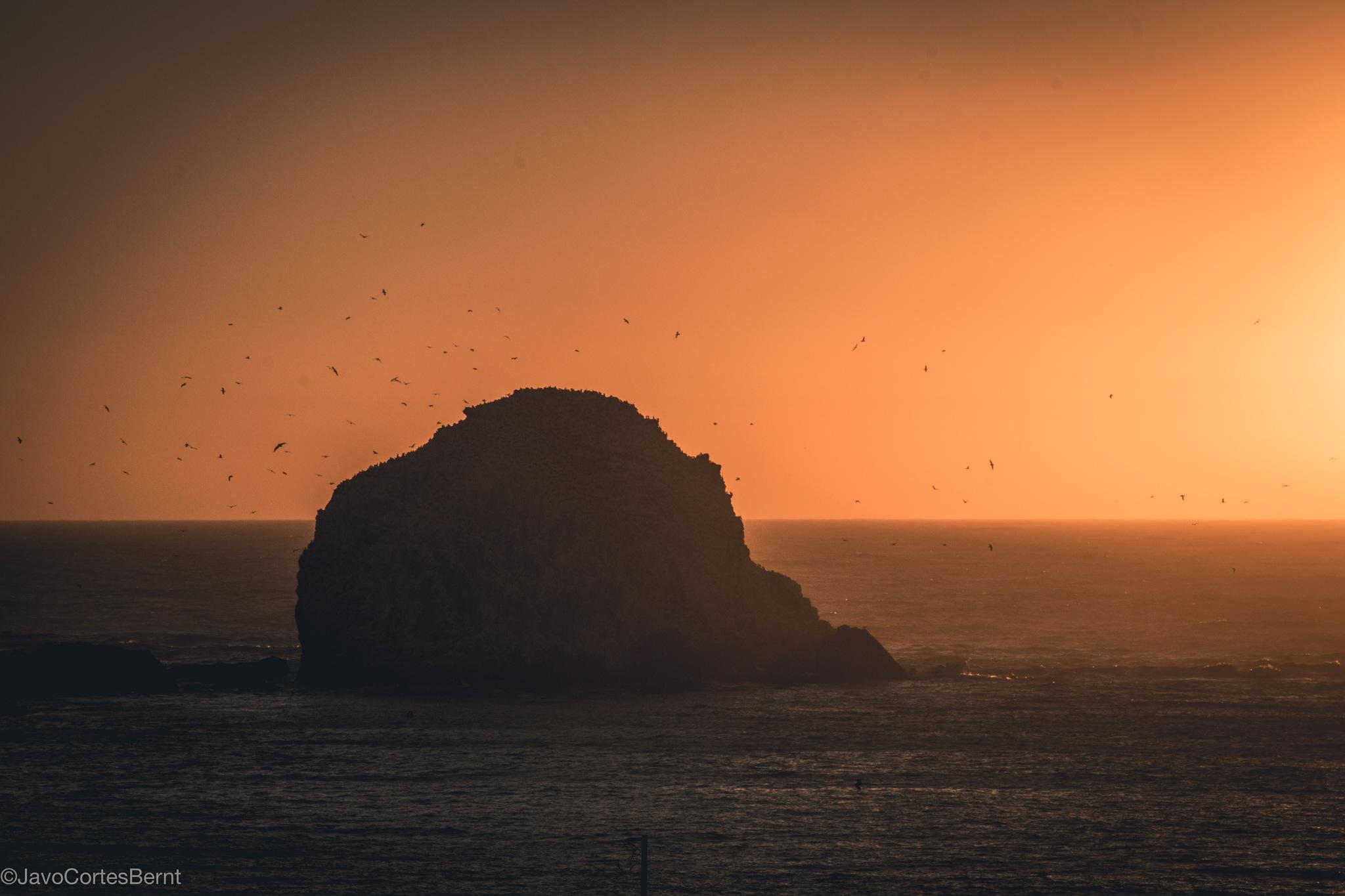 Sunset Islote Pájaros Niños by Evilcorp Photography