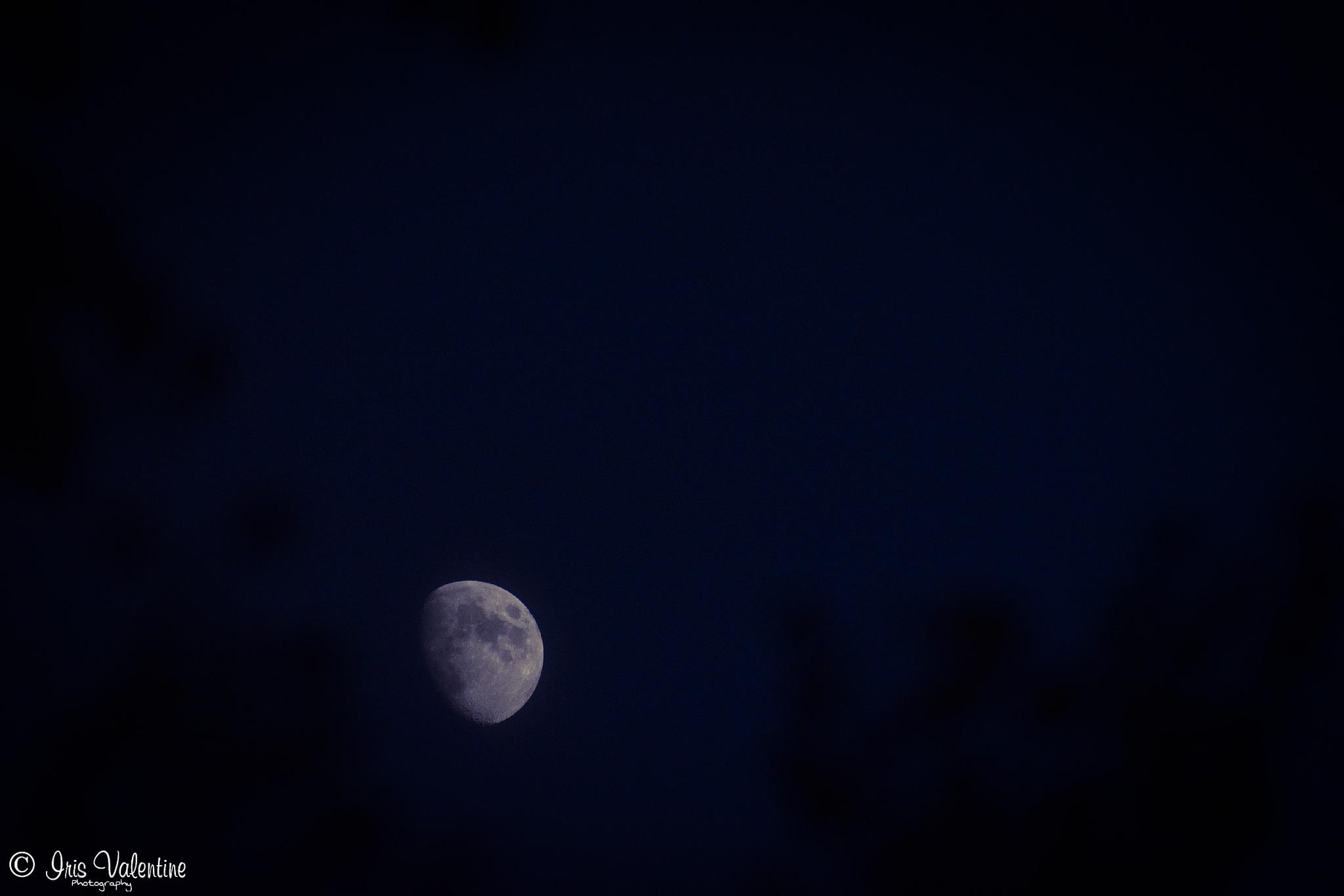 Moon Light by Iris Valentine