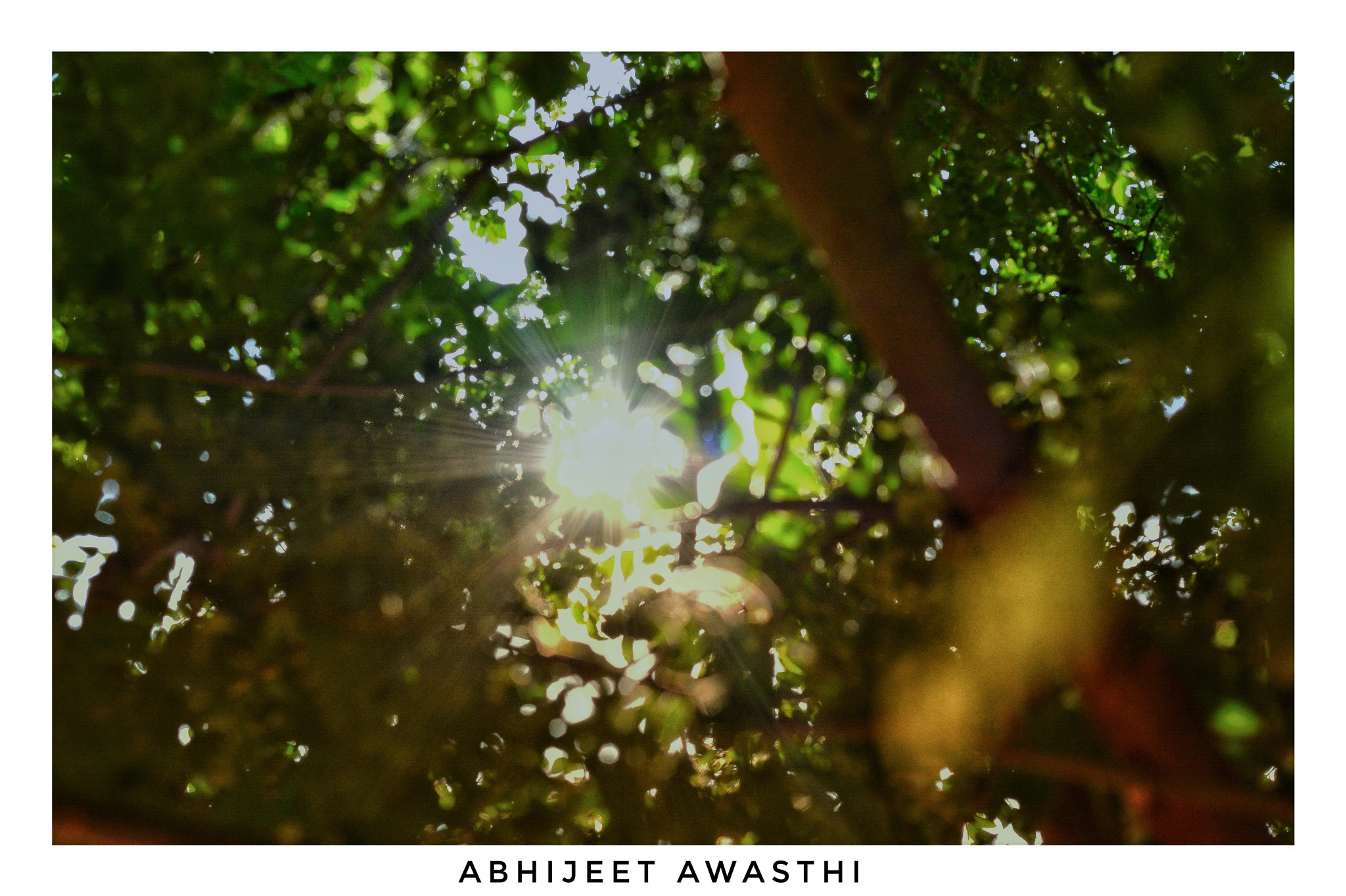 Untitled by Abhijeet Awasthi