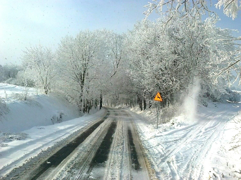Winter by Jolanta Placek