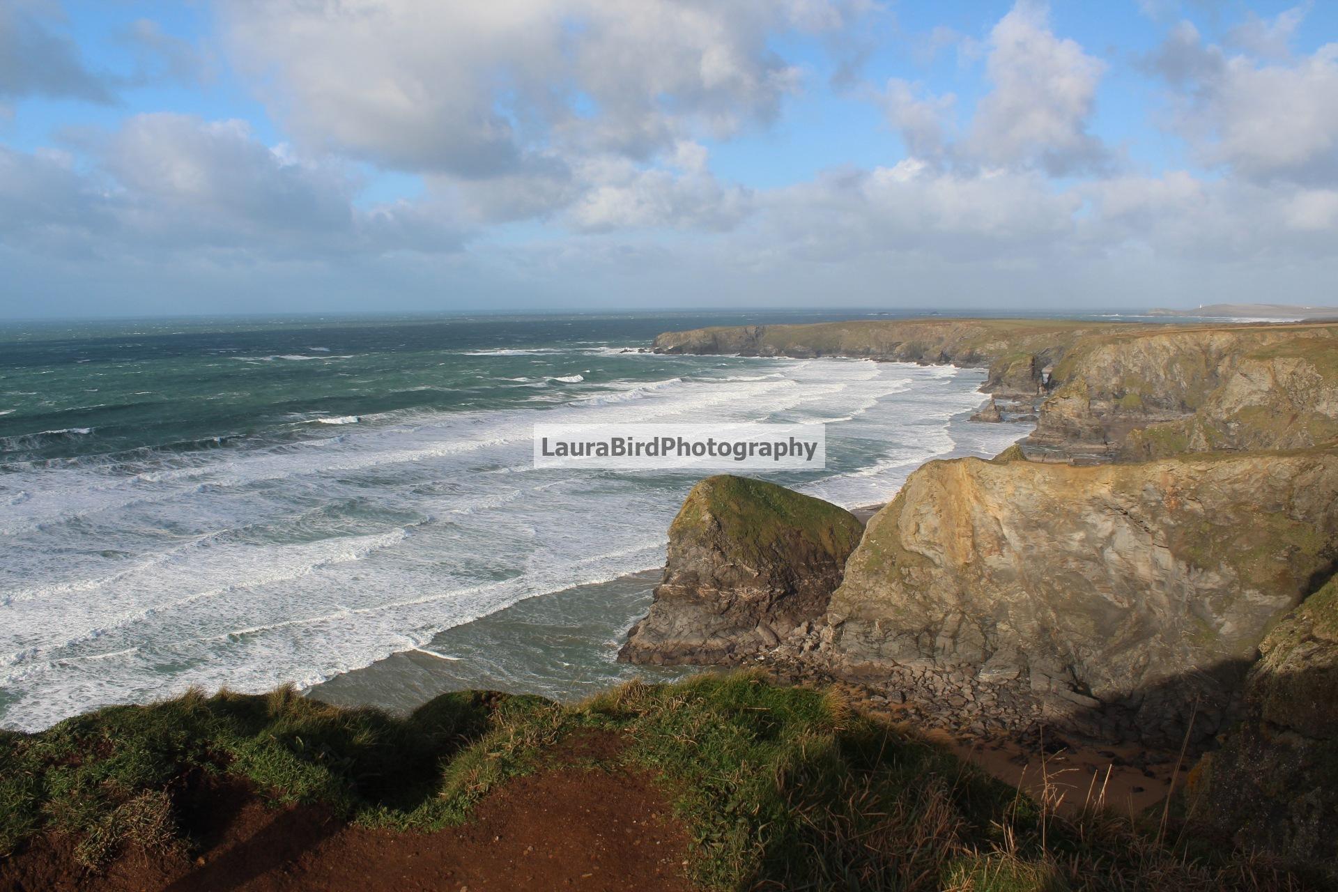 Coastal by Laura Bird