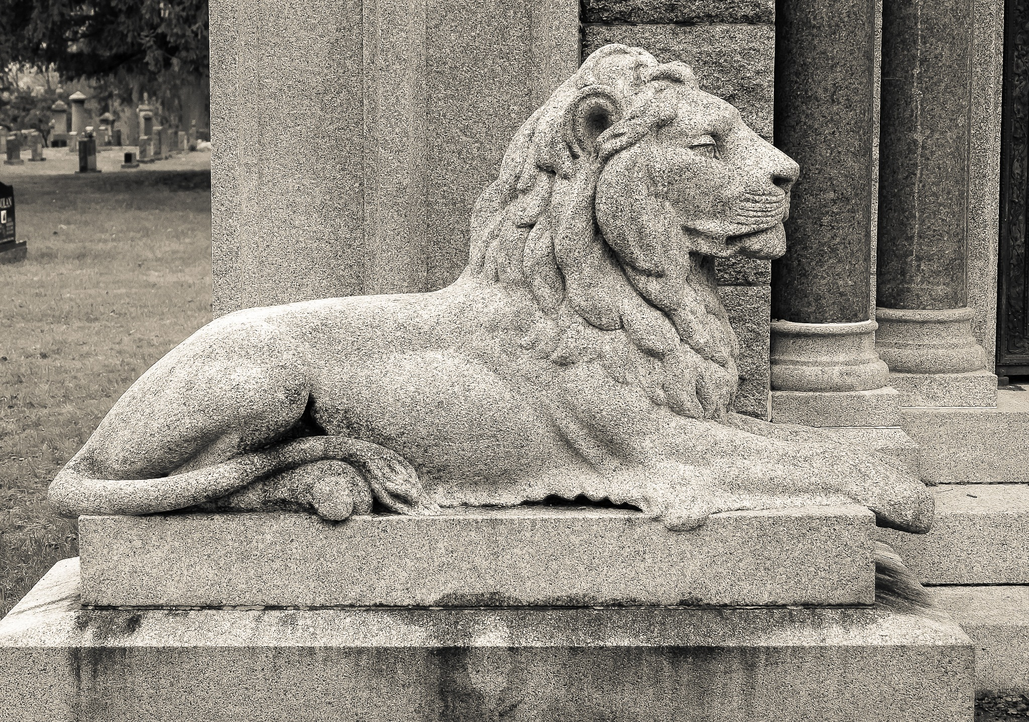 Cemetery Lion by Steve Struthers