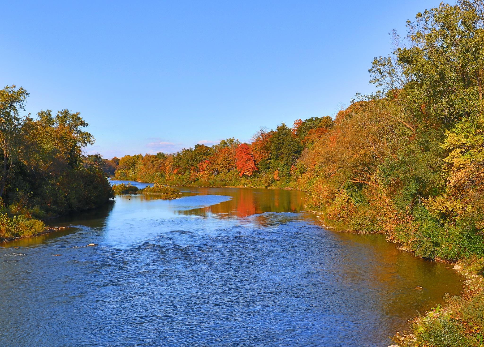 River Bend by Steve Struthers