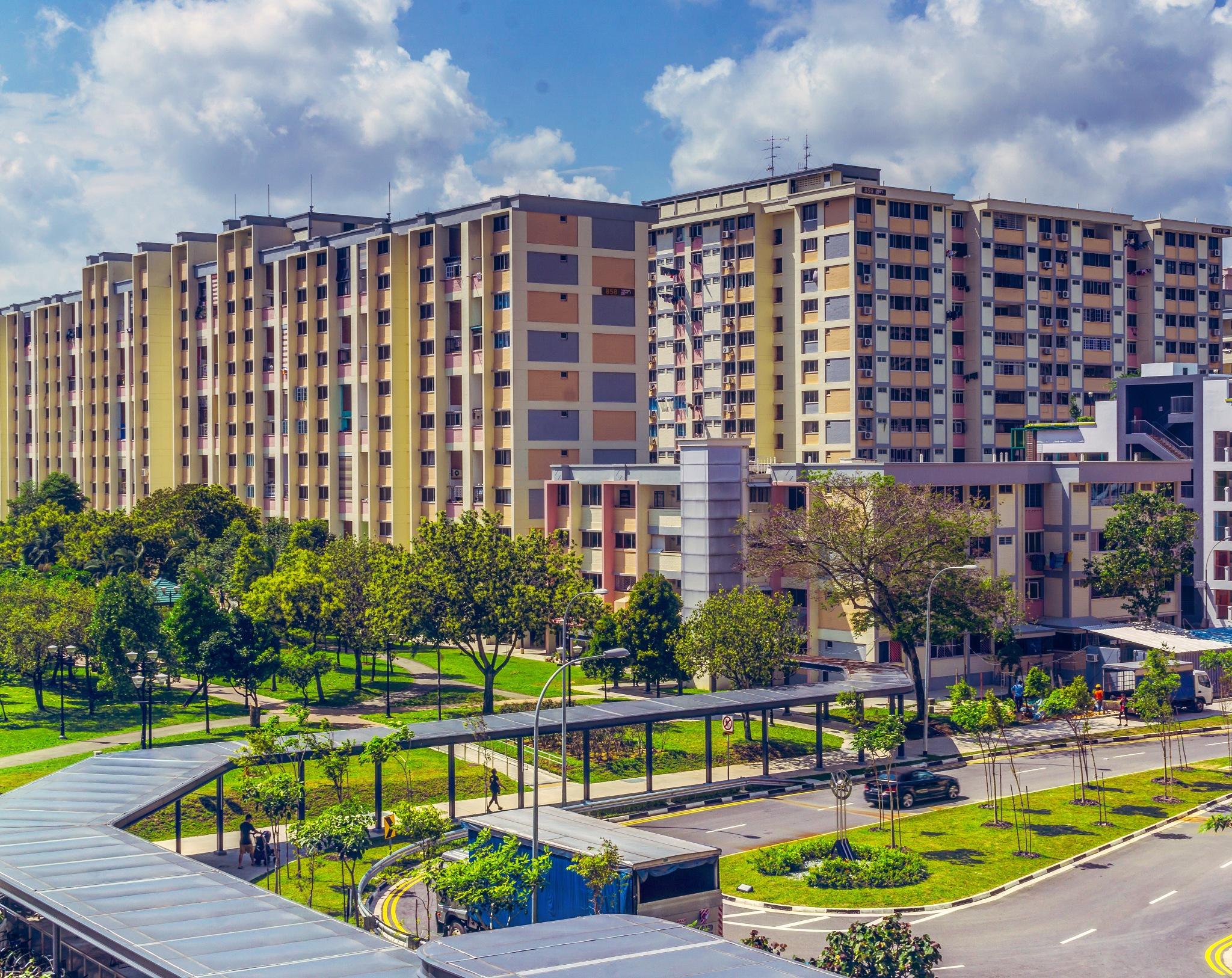 HDB blocks - Tampines  by Ashwin Sivakumar