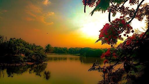 Sunset by Ankit Kumar