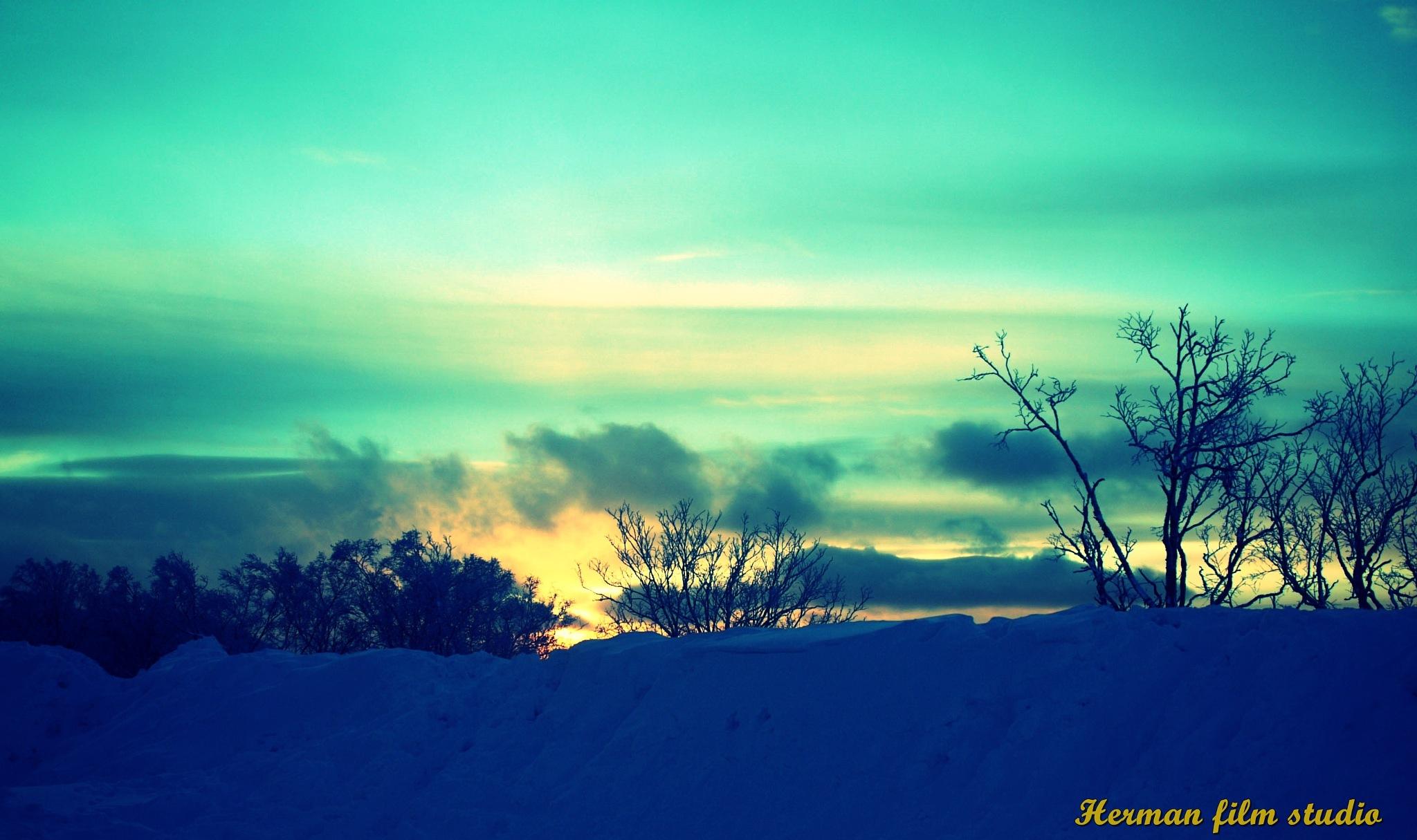 winter by hugaman157