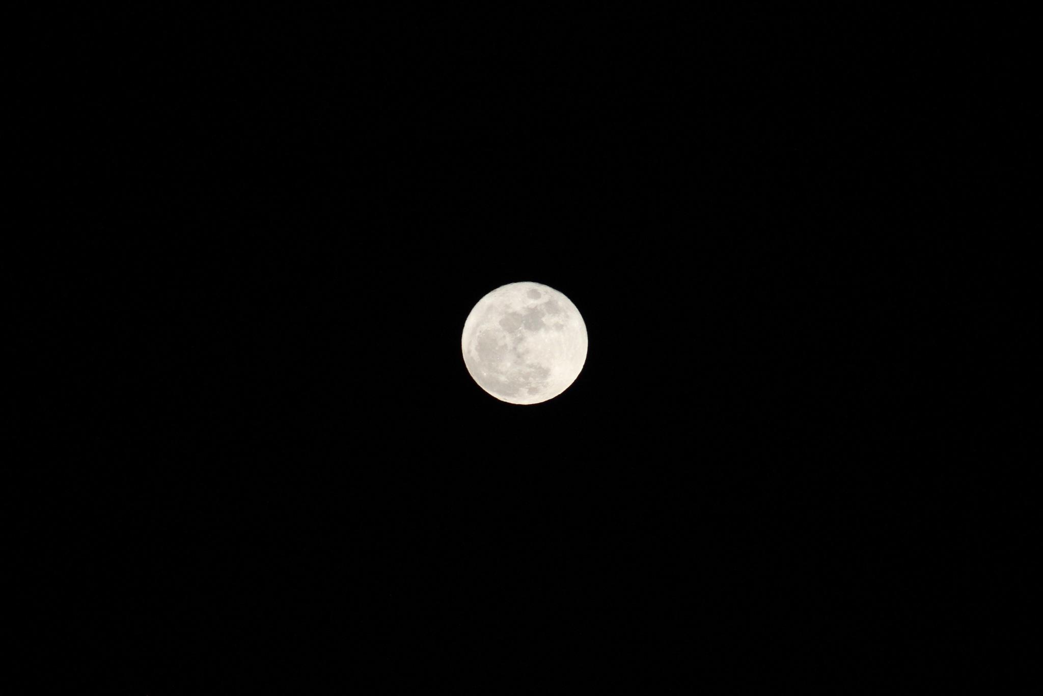 Full moon by Anna Jasmin