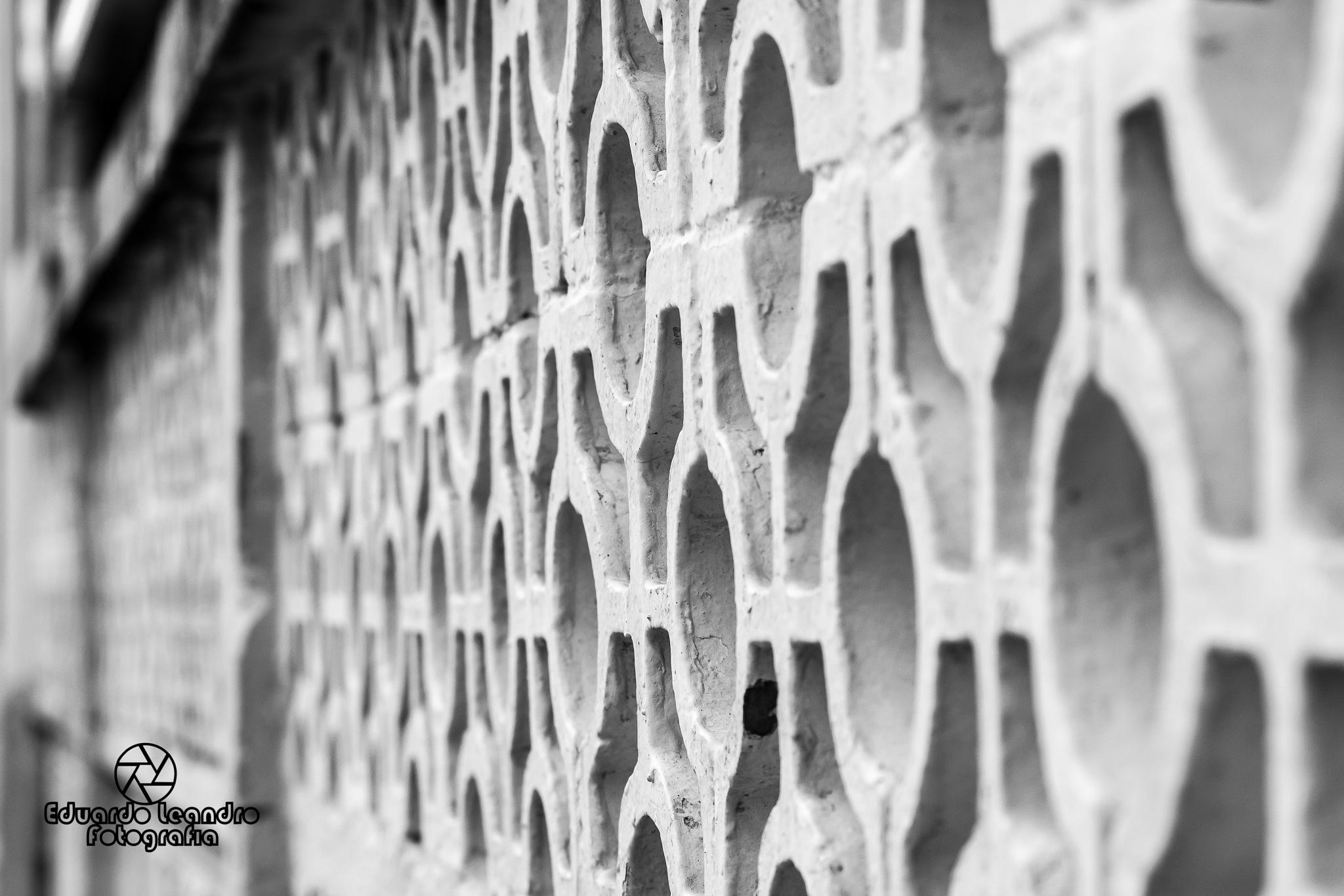 Wall (Muro) by Eduardo Leandro