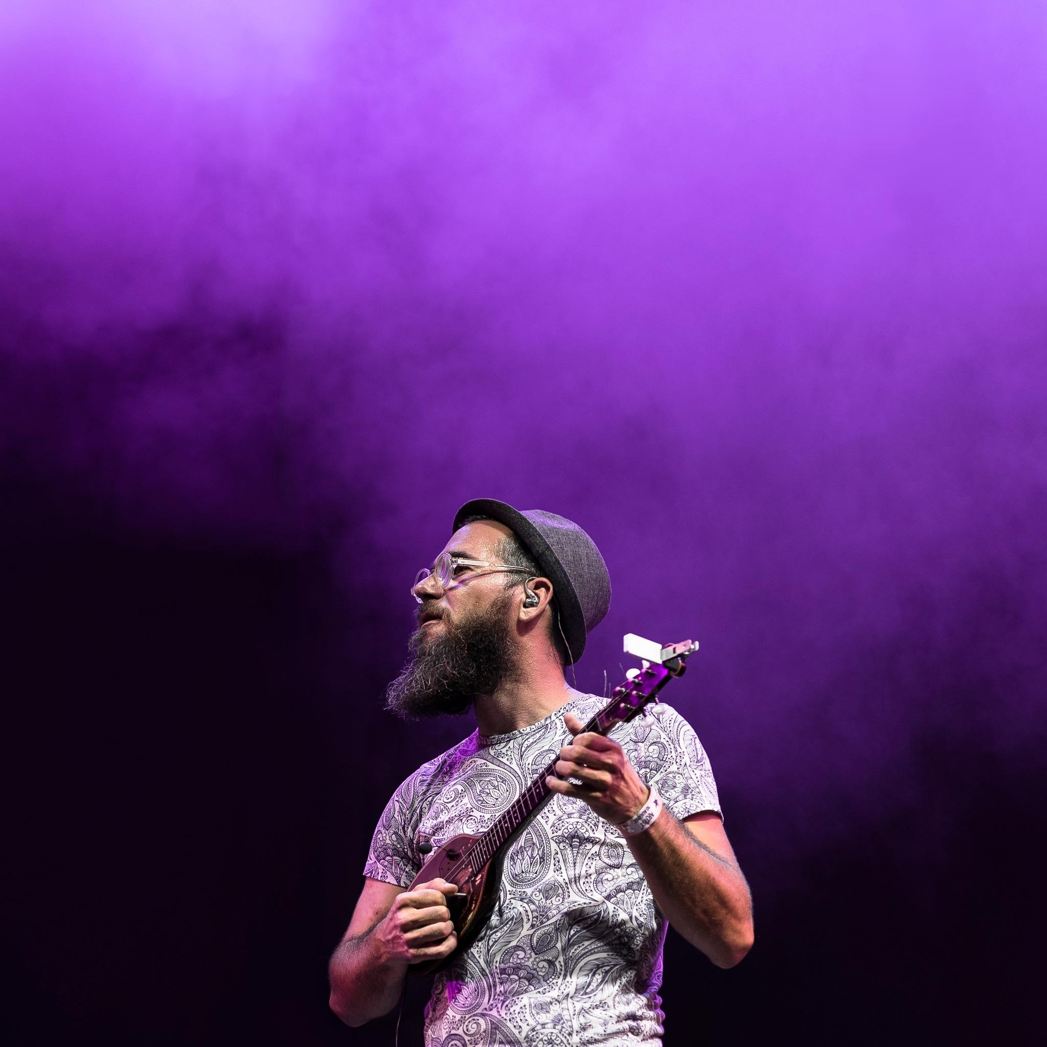 Purple haze by Levente Safrany