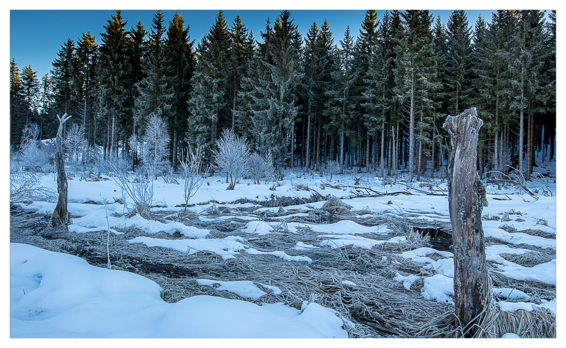 Winter in Black Forest by faizalmoidu