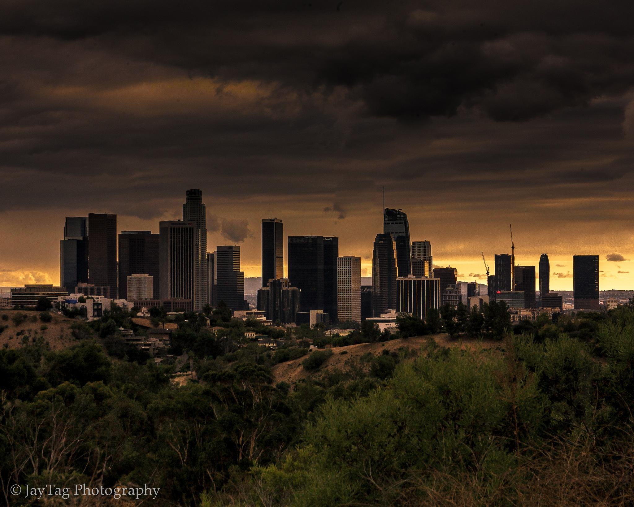 Winter in LA by Jay Tag