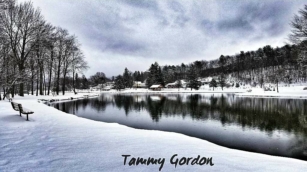 Untitled by Tammy Pearson Gordon