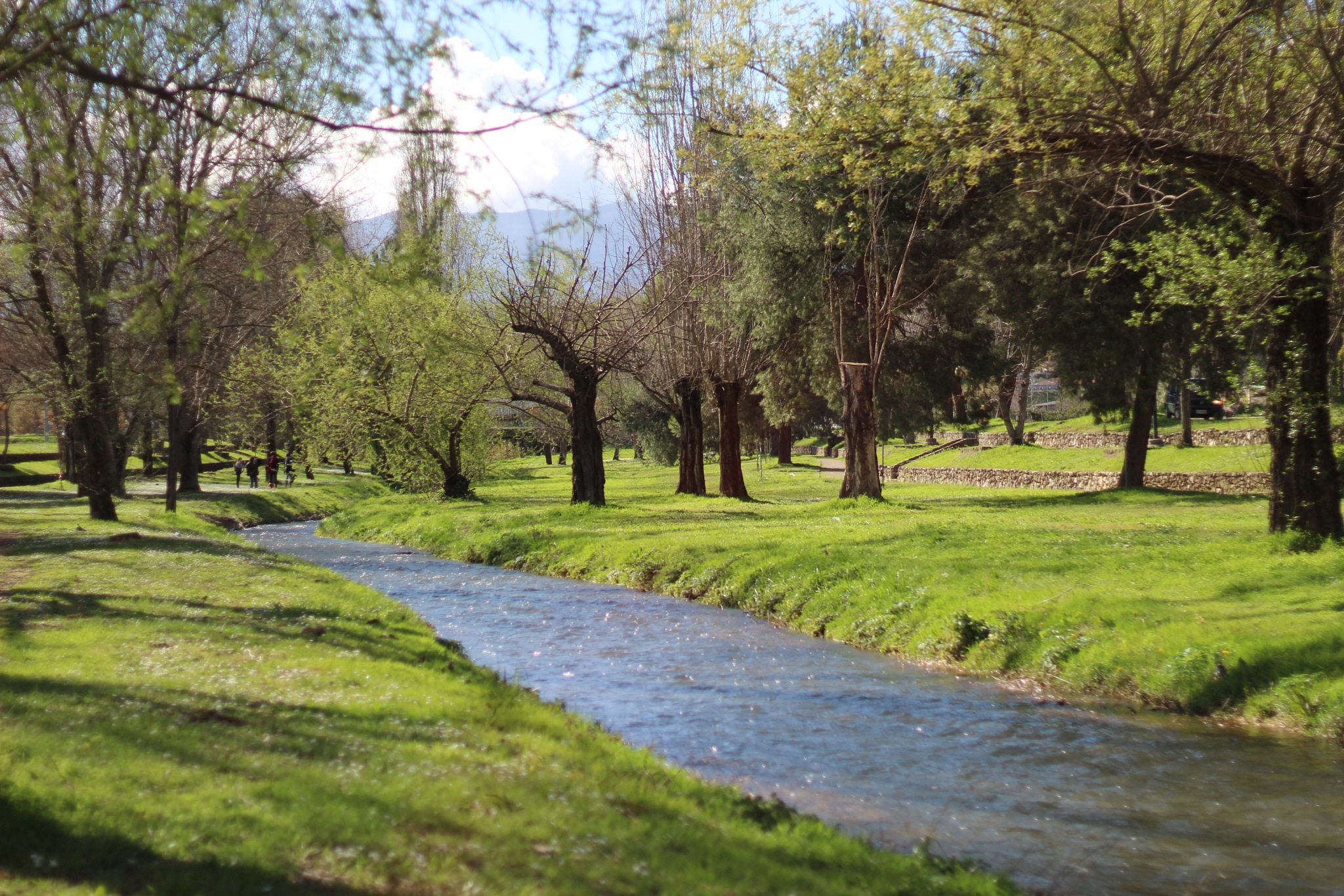 River in Rende by Dario L'Abbate