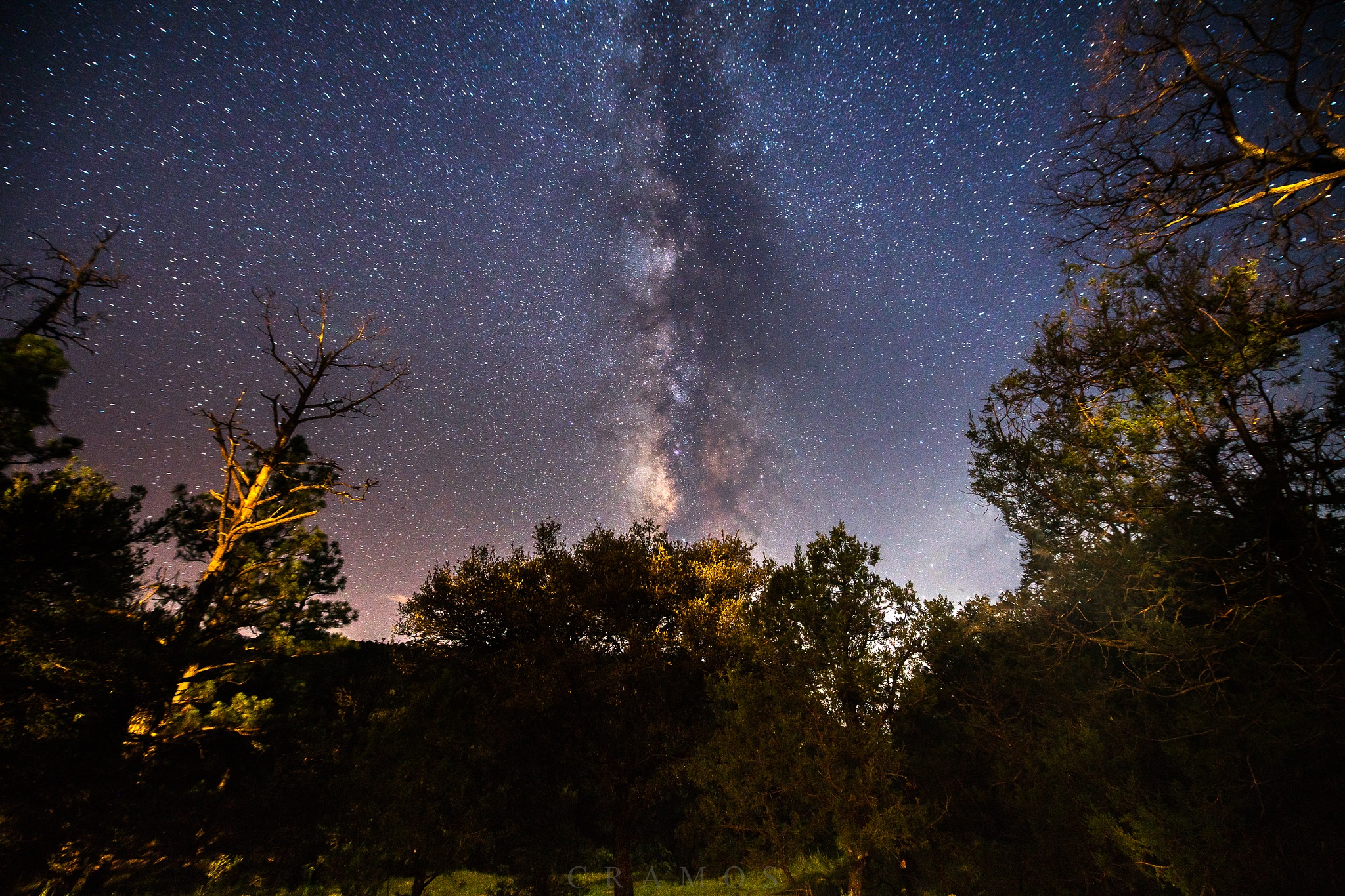 Milkyway above the forest. by César Ramos