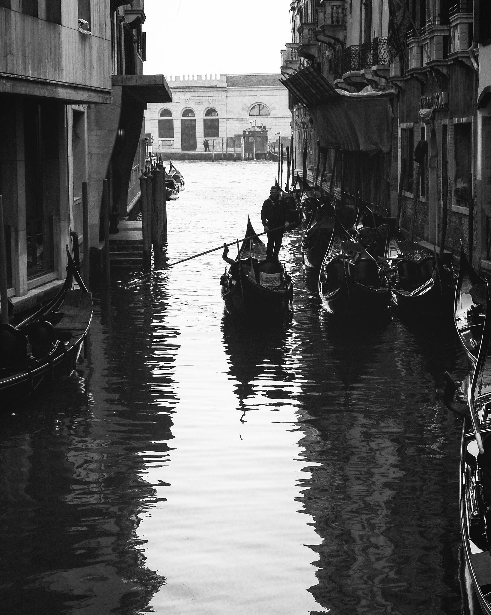 Venice  by dimcelozanoski