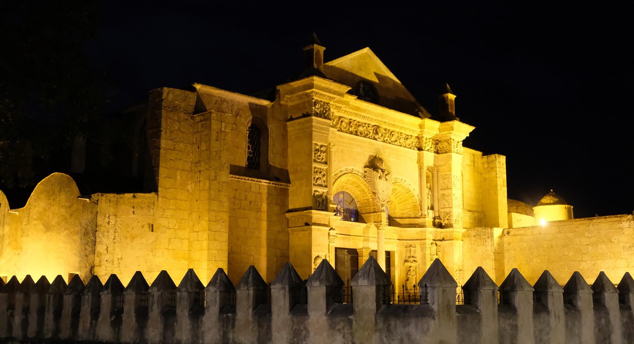 Basílica catedral de Santa María de la Encarnación by YOITOK