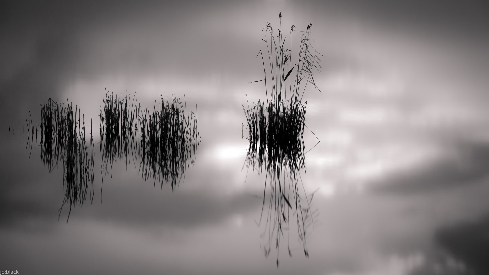 tranquility by jo:black